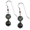 Agate Round Sterling Silver 10 mm Earrings