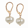 Cultured Grey Pearl Round 6-7 mm Sterling Silver Earrings